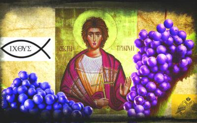 КО ЈЕ БИО СВЕТИ ТРИФУН И КАКО СУ СЕ ЊЕГОВЕ МОШТИ НАШЛЕ У СРПСКИМ ЗЕМЉАМА